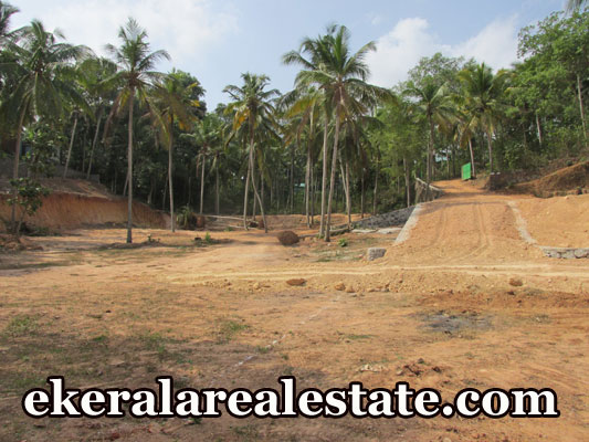 Vellayani ookode Trivandrum residential land sale at trivandrum Vellayani ookode Trivandrum
