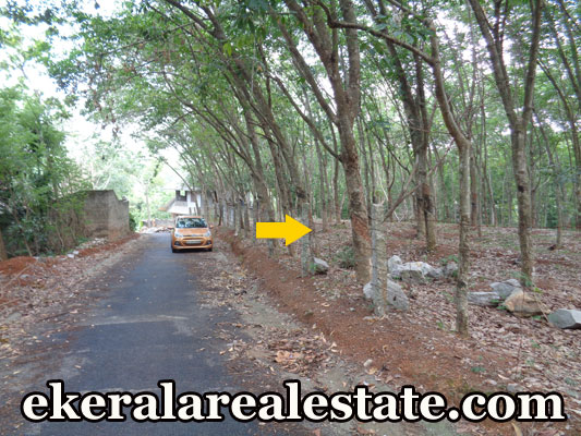 residential land for sale at Moongode Thachottukavu Trivandrum real estate properties Moongode Thachottukavu Trivandrum