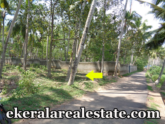 16 cent land plot for sale at VedivechanKovil Balaramapuram real estate kerala trivandrum properties