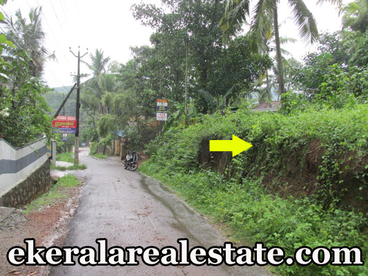 trivandrum real estate properties sale at Residential Land Sale at Karipur Nedumangad Trivandrum Nedumangad land sale