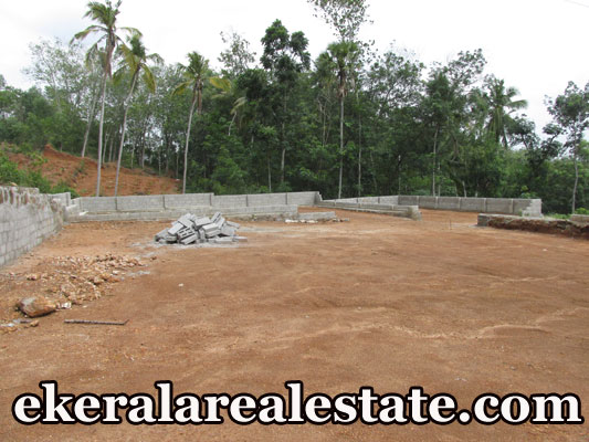 lorry access plot for sale at Tirumala Perukavu Trivandrum real estate kerala trivandrum Tirumala Perukavu Trivandrum