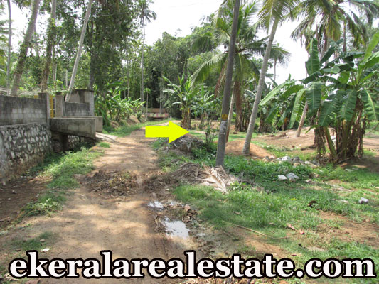 Attingal Mamam Trivandrum Attingal residential land for sale at Attingal Mamam Trivandrum Attingal real estate properties