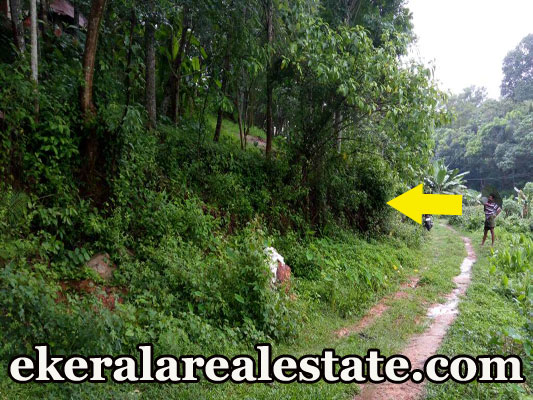 kerala real estate properties sale at Thattathumala Kilimanoor rubber land sale trivandrum Thattathumala Kilimanoor
