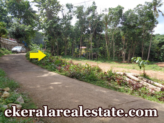 1 Acre land plot for sale at Kilimanoor Trivandrum Kilimanoor real estate kerala trivandrum Kilimanoor Trivandrum Kilimanoor