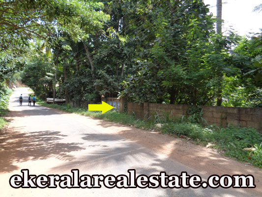 Road frontage land for sale at Marayamuttom Aruvippuram Neyyattinkara Trivandrum real estate kerala trivandrum