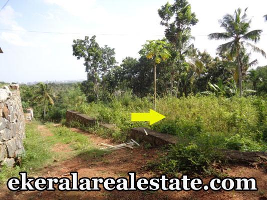 Residential Land Plots Sale at Kallayam Mukkola Trivandrum Kallayam Real Estate Properties