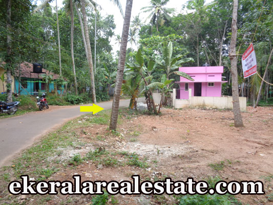 kerala house plot for sale at Santhigiri Pothencode Trivandrum Kerala Pothencode real estate trivandrum