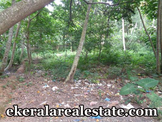 Residential Land Sale at Mukkola Vizhinjam Trivandrum Vizhinjam Real Estate Properties Kerala Real Estate