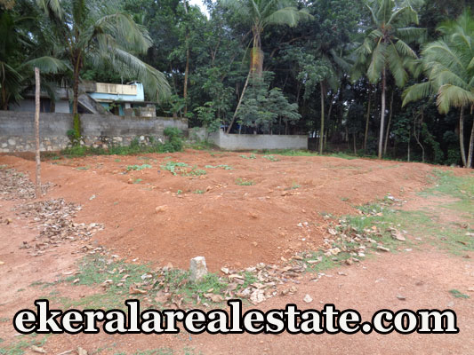 Residential Land Sale at Poovachal Kattakada Trivandrum Poovachal Real Estate Properties