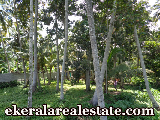 2 lakhs per cent land for sale at Trivandrum Vellayani real estate kerala Trivandrum Vellayani
