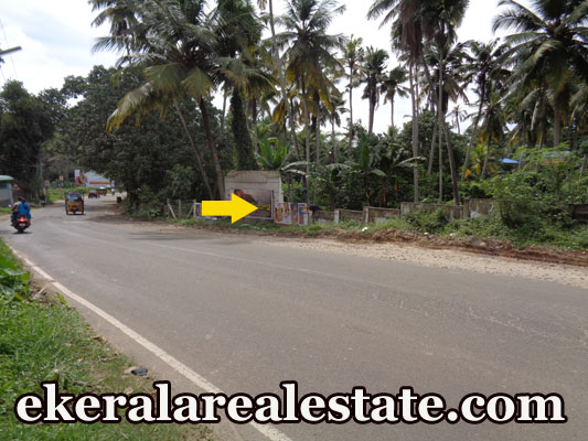 10 lakhs per cent land plot for sale ar Nedumangad Trivandrum Nedumangad real estate kerala Nedumangad Trivandrum