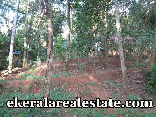 house plot for sale at Naruvamoodu Pravachambalam Trivandrum real estate kerala trivandrum