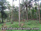 plot land for sale at sreekariyam trivandrum kerala real estate trivandrum properties