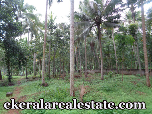 plot land for sale at sreekariyam trivandrum kerala real estate trivandrum properties