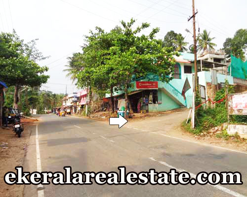 land for sale at Nedumangad Trivandrum real estate kerala Pathamkallu Nedumangad Trivandrum