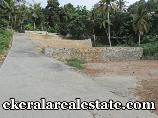 Residential Land Plots Sale at Mangalapuram Trivandrum Kerala Mangalapuram Real Estate Properties
