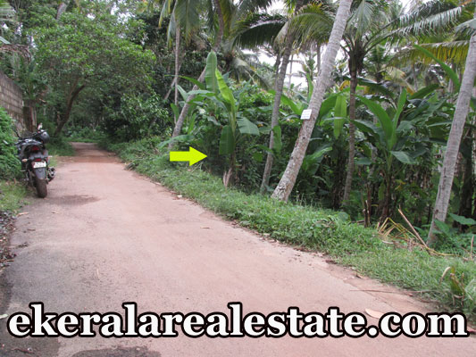 low price house plot for sale at Trivandrum Mangattukadavu Thirumala real estate kerala trivandrum
