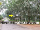 road Frontage house plot for sale at Palamukku Panachavila Anchal kollam real estate properties