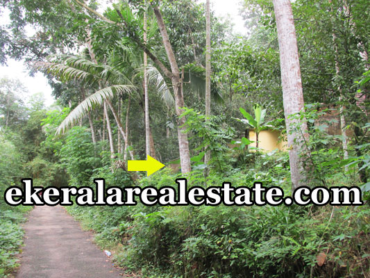land for sale at Mylam Aruvikkara Trivandrum real estate kerala house plot sale