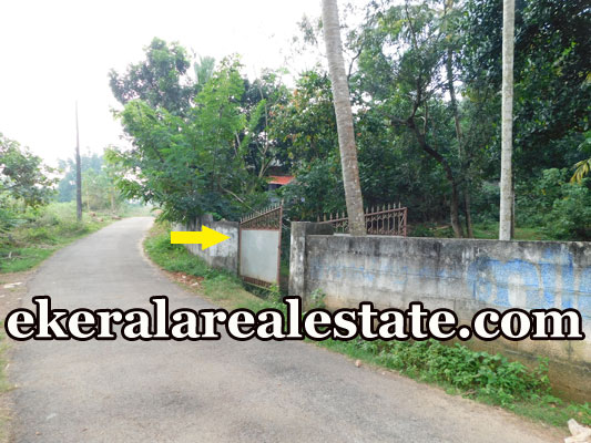 trivandrum land for sale at Mavinmoodu Kallambalam Trivandrum real estate Kallambalam kerala
