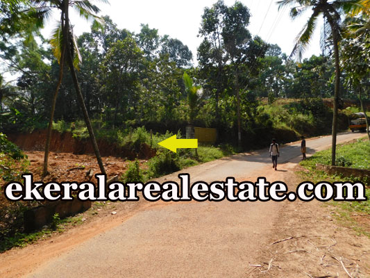 lorry Access house plot for sale at Uriyacode Junction Vellanad Trivandrum Vellanad real estate properties sale