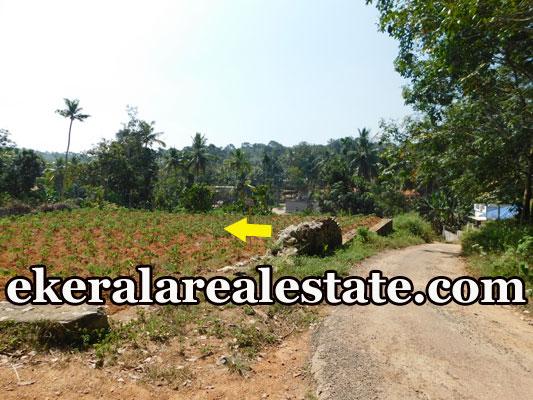 3 lakhs per Cent land for sale at Pulimathoor Pothencode Sreekaryam Trivandrum Sreekariyam real estate kerala