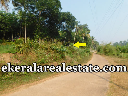 house plot for sale at Mundela Aruvikkara Nedumangad Trivandrum Nedumangad real estate kerala