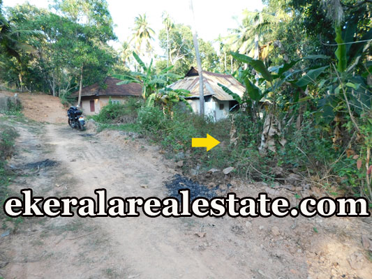 lorry plot for sale at Kariyam Sreekariyam Trivandrum Sreekariyam kerala real estate properties sale