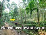 house plot for sale at Neyyattinkara Trivandrum Neyyattinkara real estate properties sale