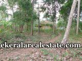 plot for sale at Venkulam Edava Varkala Trivandrum Venkulam real estate properties sale