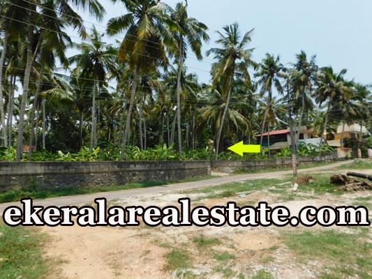 80 Cent land for sale at Balaramapuram trivandrum real estate kerala
