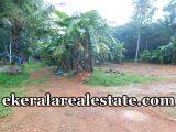 Cheap rate land plot sale at Moonnalam Adoor