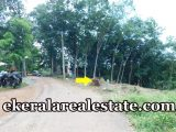 Low Budget land plot sale at Thachottukavu near Peyad
