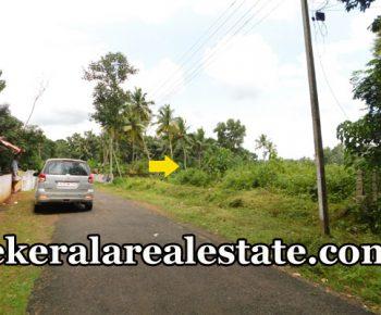 Kattakada Low budget land sale in Trivandrum